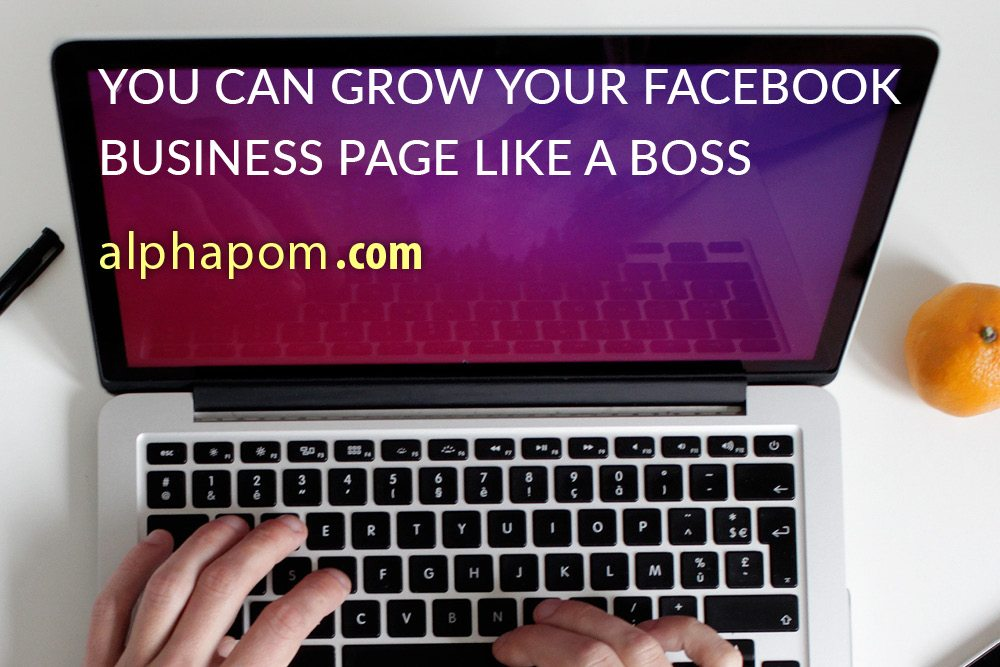 You Can Grow Your Facebook Business Page Like a Boss