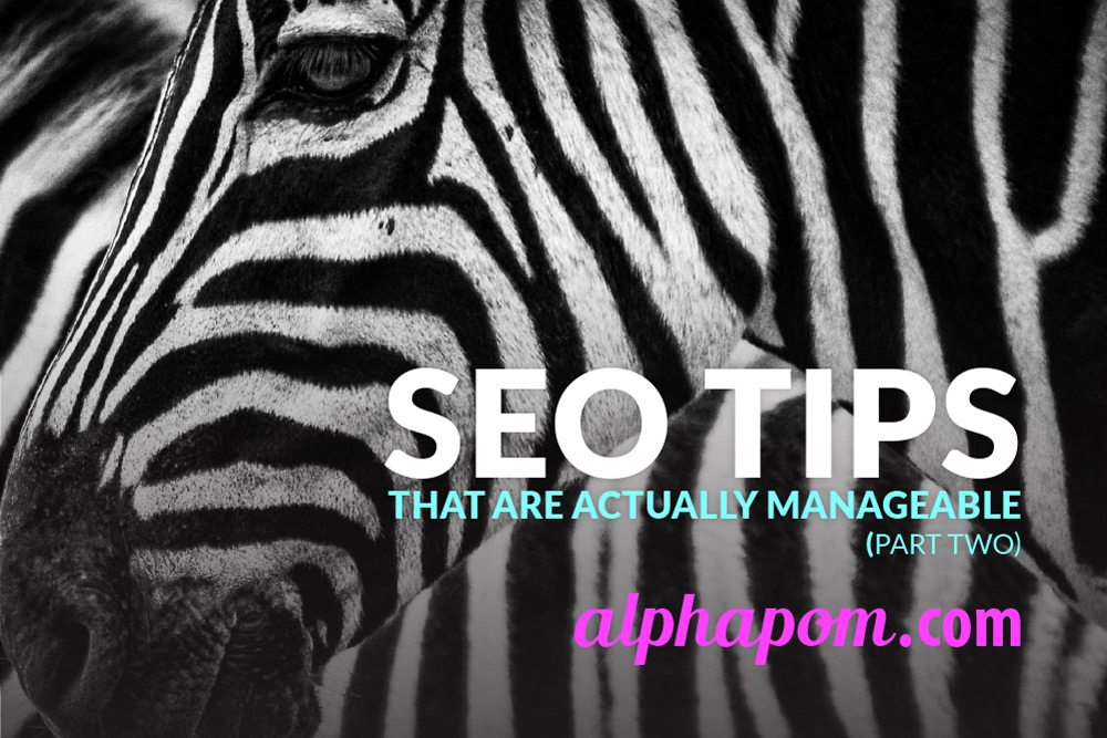 SEO Tips that are Actually Manageable Part Two